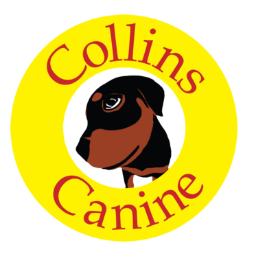 CURRENTCollins_Canine_Color - NEW