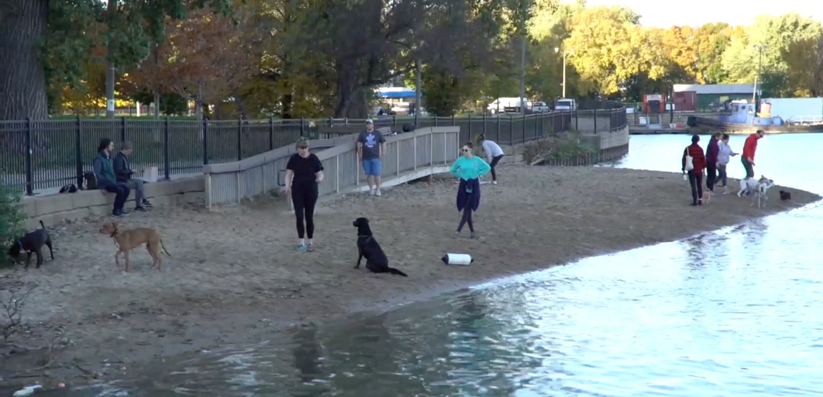 Chicago Dog Parks  Chicago Dog Park Guide From Windy City Paws - Map of chicago dog parks