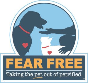 Fear Free Dog Walking