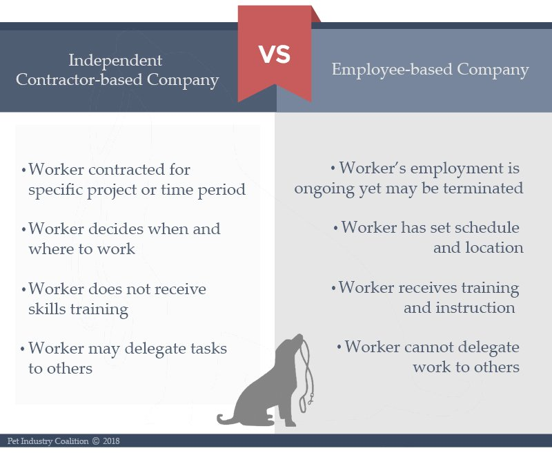 Advantages Of Employee Dog Walkers Vs Independent Contractors