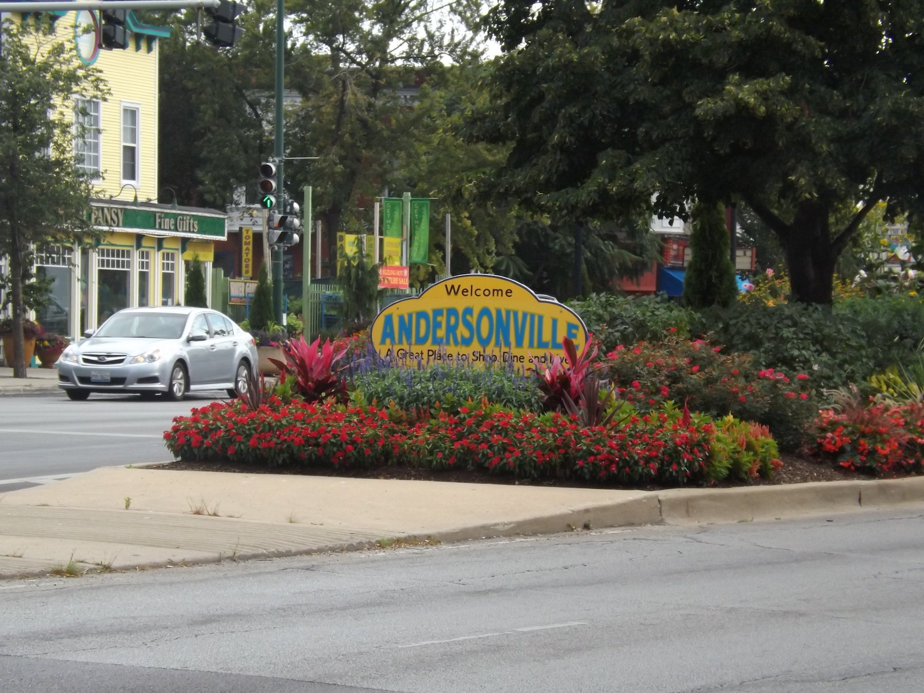 andersonville dog walking area