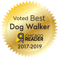 best dog walker chicago