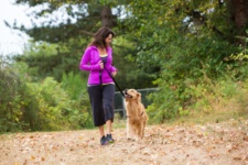 Hikes for Dogs Near Chicago