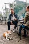 Visiting a Dog-Friendly Restaurant in Chicago with your Pup