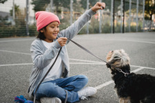 Sit and Stay (Inside): How Covid is Impacting Dog Training